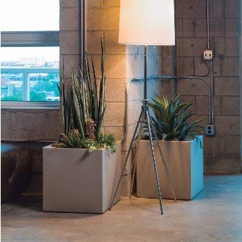 Pandora Planter