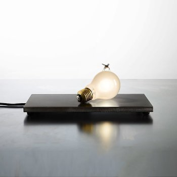 Fly LED Table Lamp