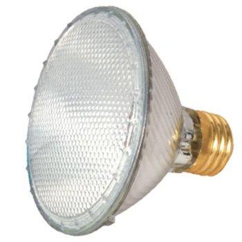 60W 120V PAR30 E26 Halogen Wide Flood Bulb 2-Pack