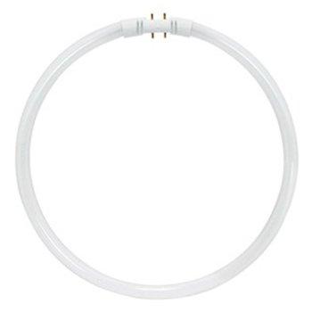 55W T5 2GX13 Circline Fluorescent 4100K Bulb