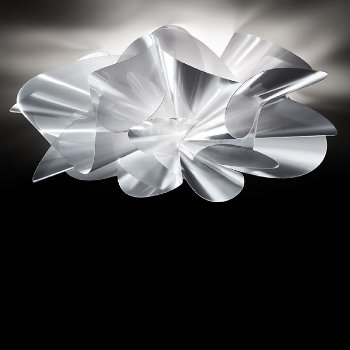 Etoile LED Wall/Ceiling Light