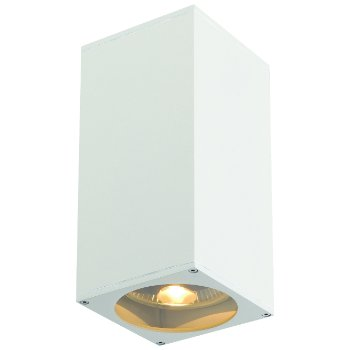 Big Theo Up-Down Outdoor Wall Sconce