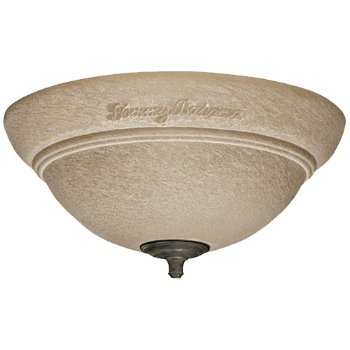 Trella Light Fixture