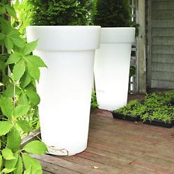 Aix Classica LED Planter
