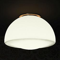 Drop Wall/Ceiling Light