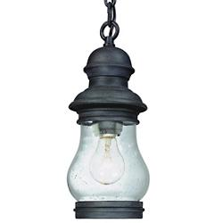 Hyannis Port Small Outdoor Pendant Lantern