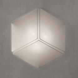 Necky Ceiling/Wall Light