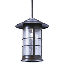 Newport 9 in. Outdoor Pendant