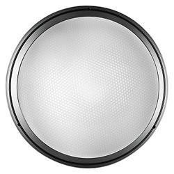 Pantarei Outdoor LED Wall/Ceiling Light