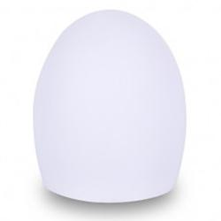 Point LED Indoor/Outdoor Lamp