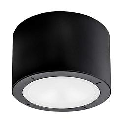 Vessel LED Indoor/Outdoor Flushmount
