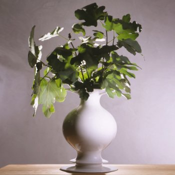 Bianco Vase