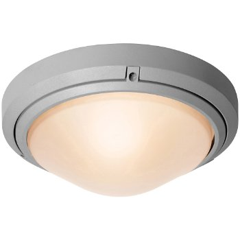 Oceanus Ceiling/Wall Light