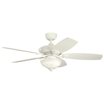 Canfield Pro Ceiling Fan