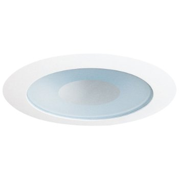 "4"" Adjustable Frosted Lens with Clear Center Trim"