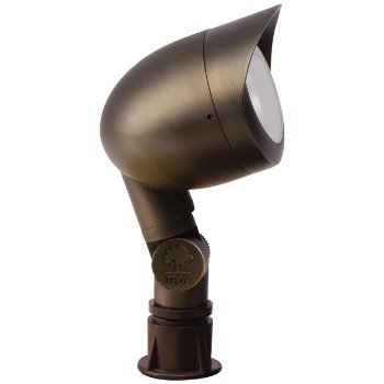 Oval Flood Light