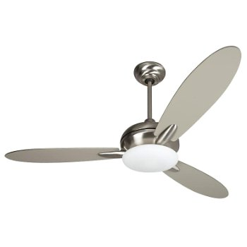 Loris Ceiling Fan