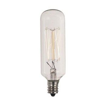 40W 120V E12 T8 Carbon Filament Bulb