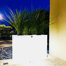 Aix Longa LED Planter