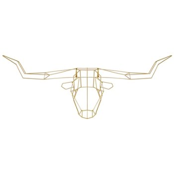 Longhorn Trophy Head