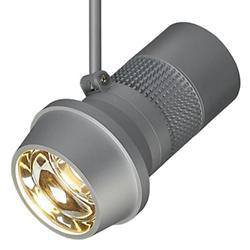 Magnum LED Canopy Spotlight
