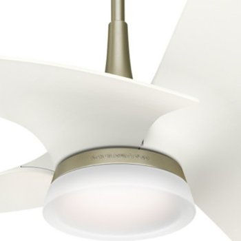 Orchid Ceiling Fan By Casablanca Fan Company At Lumens Com