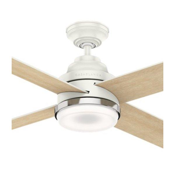 Daphne Ceiling Fan