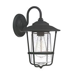 Creekside Caged Outdoor Wall Sconce