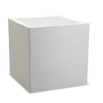 Shown in Alpine White color