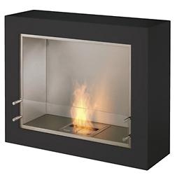 Aspect Fireplace
