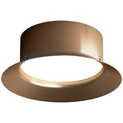Maine Ceiling/Wall Light