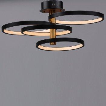 Shown in 4 Light