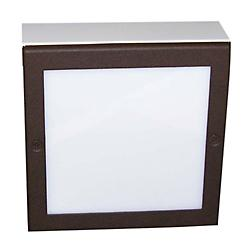 Square LED Paver Light