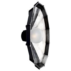 Mysterio Ceiling/Wall Light (Black and Silver) - OPEN BOX RETURN