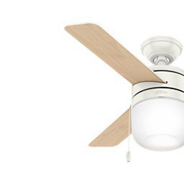 Acumen Ceiling Fan
