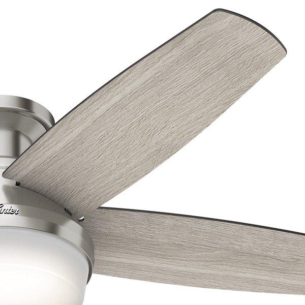 Avia Ceiling Fan