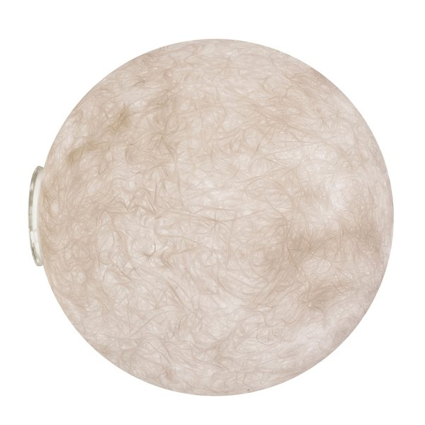 A Moon Out Outdoor Wall Sconce