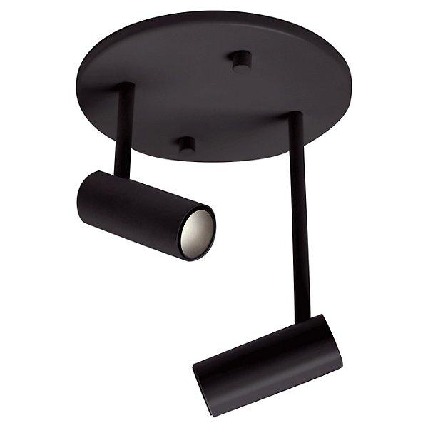 Downey 2 Light Adjustable LED Spot Light