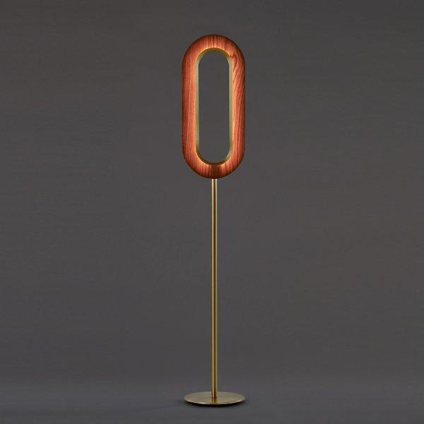 Lens Oval LED Floor Lamp