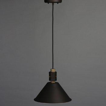 Tucson Mini Pendant, in use