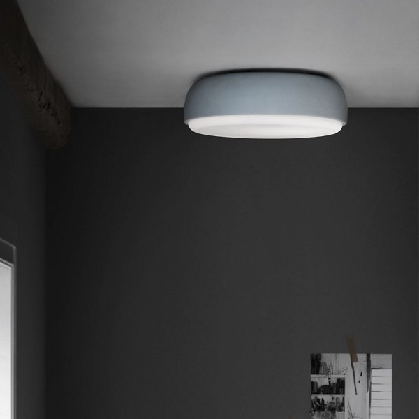 Over Me Wall / Ceiling Flushmount