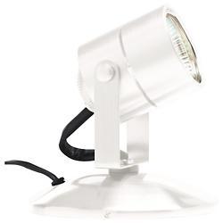 Lil Big Wonder Accent Lamp