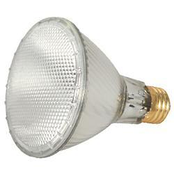 60W 120V PAR30LN E26 Halogen Wide Flood Bulb 2-Pack