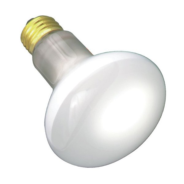 45W 120V R20 E26 Frosted Bulb 4-Pack