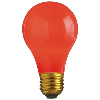 60W 120V A19 E26 Ceramic Red Bulb 4-Pack