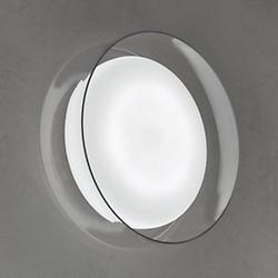 Diver LED Wall Sconce