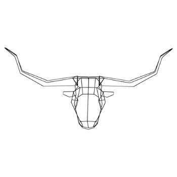 Longhorn Trophy Head