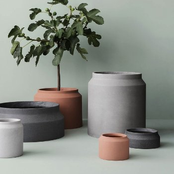 Concrete Pot Collection