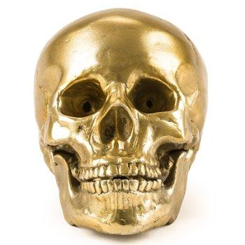 Wunderkrammer Human Skull, front view