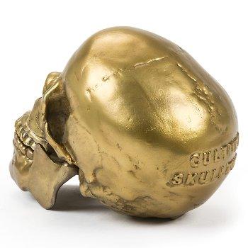 Wunderkrammer Human Skull